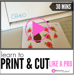 http://academy.terrijohnsoncreates.com/course/print-and-cut-101/?partner=11