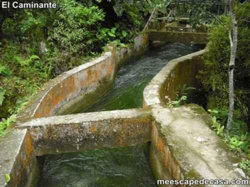 Canal artificial en el Centro Turístico Naciente del Río Tioyacu (Rioja, Perú) 1