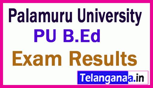Palamuru University B Ed Regular Exam Results