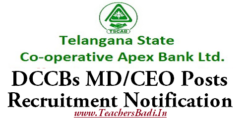 TSCAB, DCCBs, CEO Posts