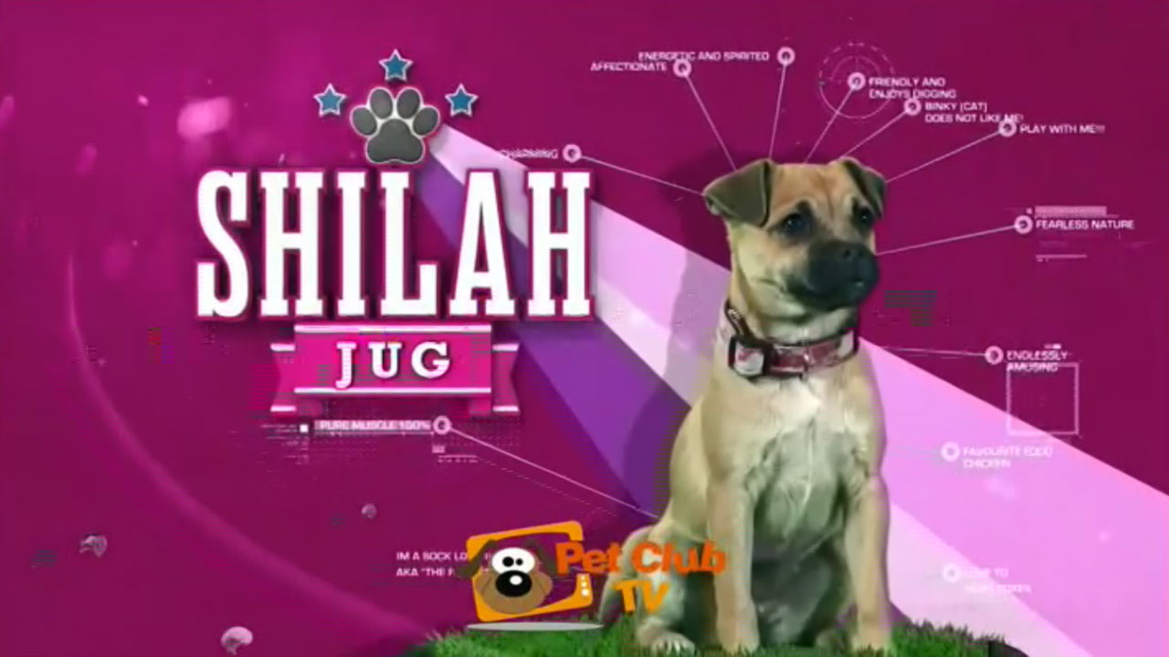 Frekuensi siaran Pet Club TV di satelit ABS 2 Terbaru