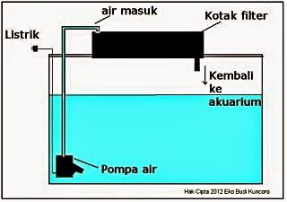 Mengenal Pompa Aquarium Dan Cara Kerjanya