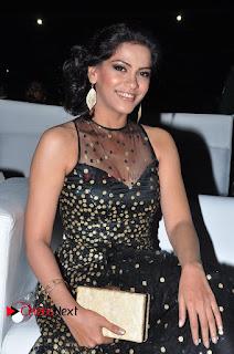 Actress Zabyn Khan Stills in Long Dress at 9th Edition Epicurus Indian Hospitality Awards .COM 0014.JPG