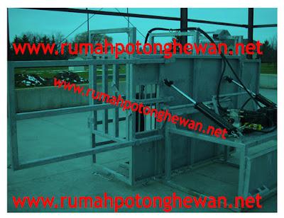 Meja Potong Kuku Sapi dengan mesin hidrolik