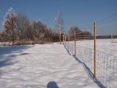 Vinex Bt villanypásztor télen