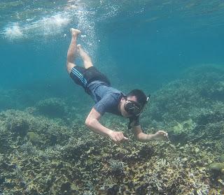 keindahan trumbu karang di pulau pahawang