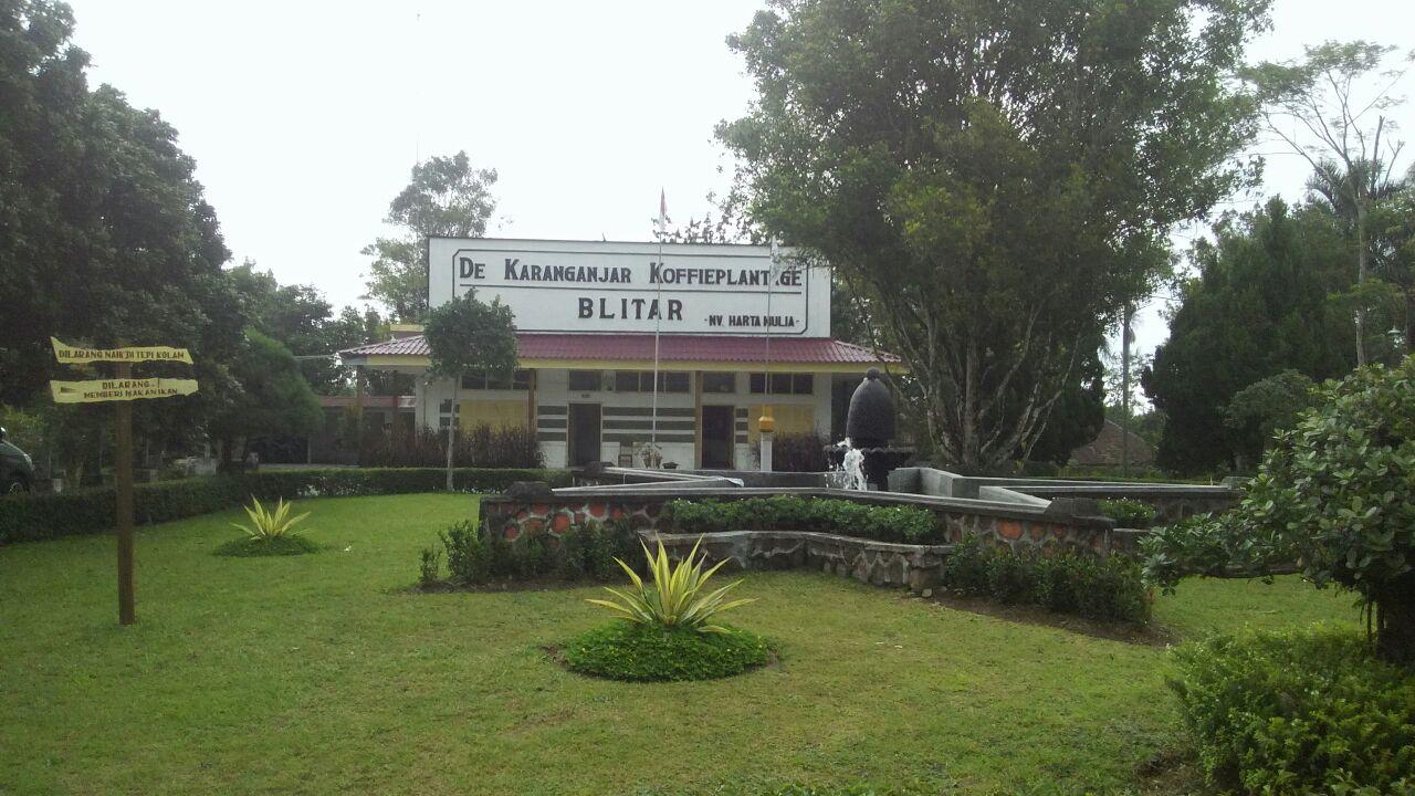 Image result for Wisata Blitar kebun kopi