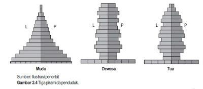 PIRAMIDA PENDUDUK INDONESIA