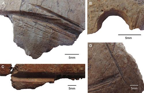 Göbekli Tepe: un culte du crâne du néolithique révélé par les chercheurs