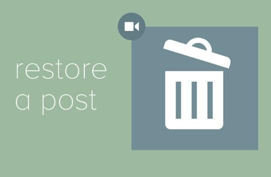 Get Website Deleted or Lost Posts Back Easily