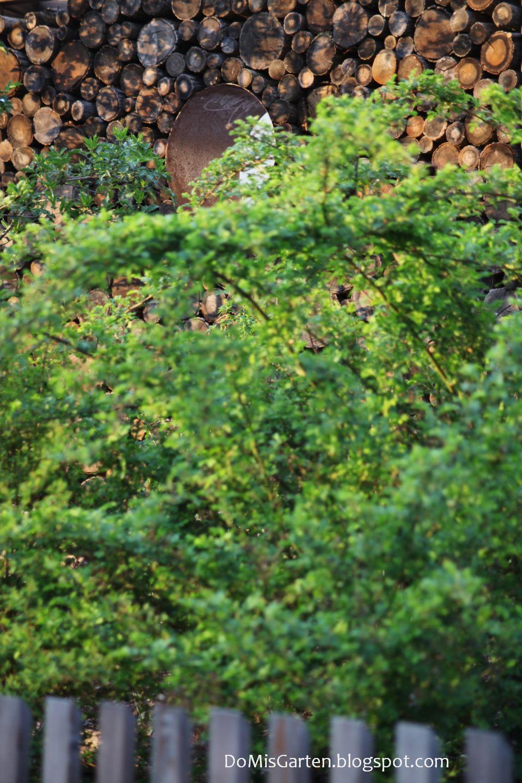 Do Mi s Garten Neuaufbau Rundholzsichtschutz mit Rosenbogen