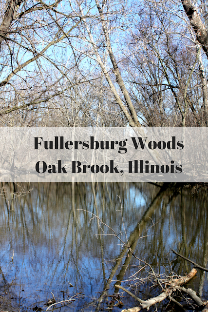 Hiking in Fullersburg Woods in Oak Brook, Illinois