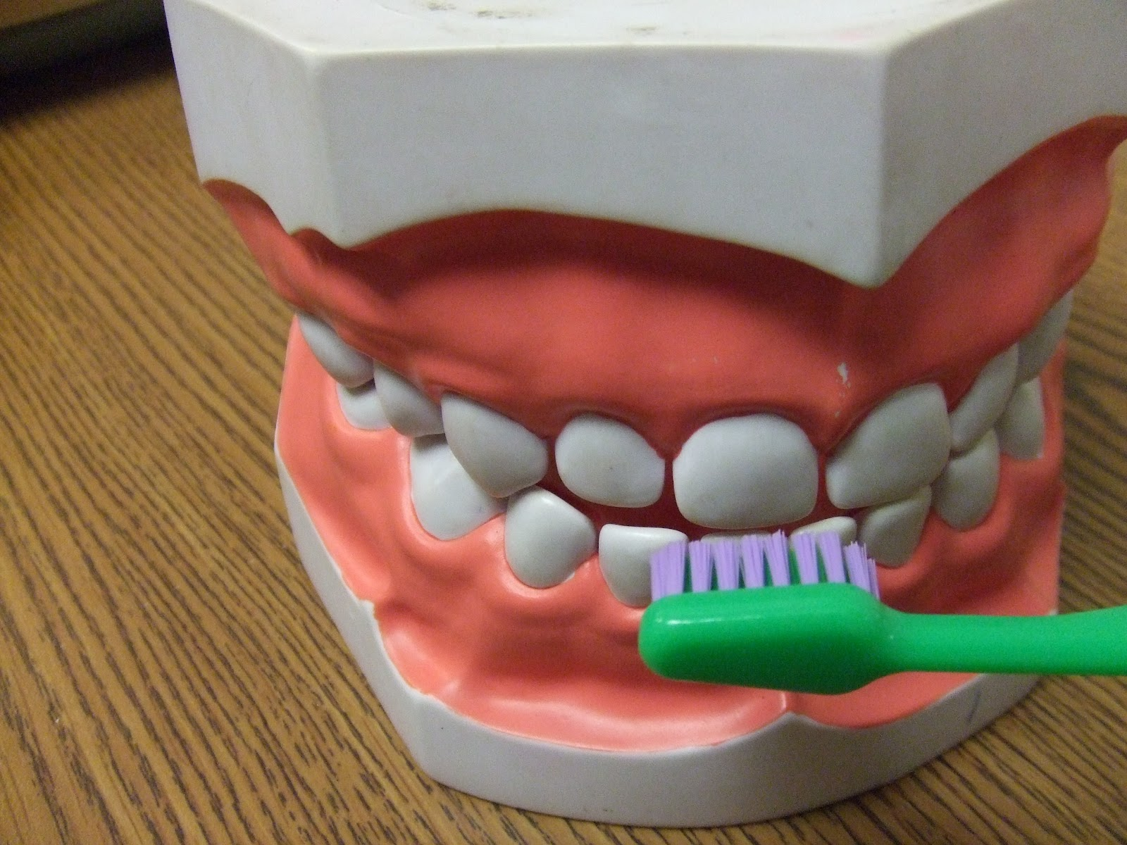 Cachey Mama S World Of Learning Brushing Teeth Activity
