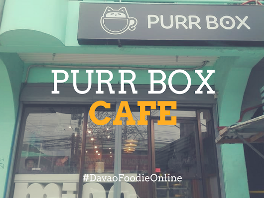 Chilling With The Felines at Davao City's first cat cafe, PurrBox Cafe: Supplies and Accessories Co.