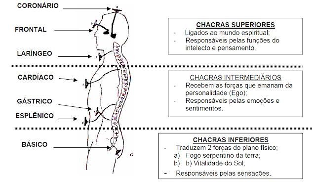 Resultado de imagem para DESPERTAR DO CONHECIMENTO - OS DEDOS E SEUS CHACRAS CORRESPONDENTES.