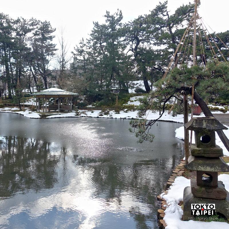 【白山公園】日本最早的都會公園 忠犬護主超感人
