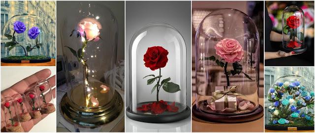 rosas-regalo-diy