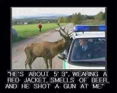 Deer Shooting