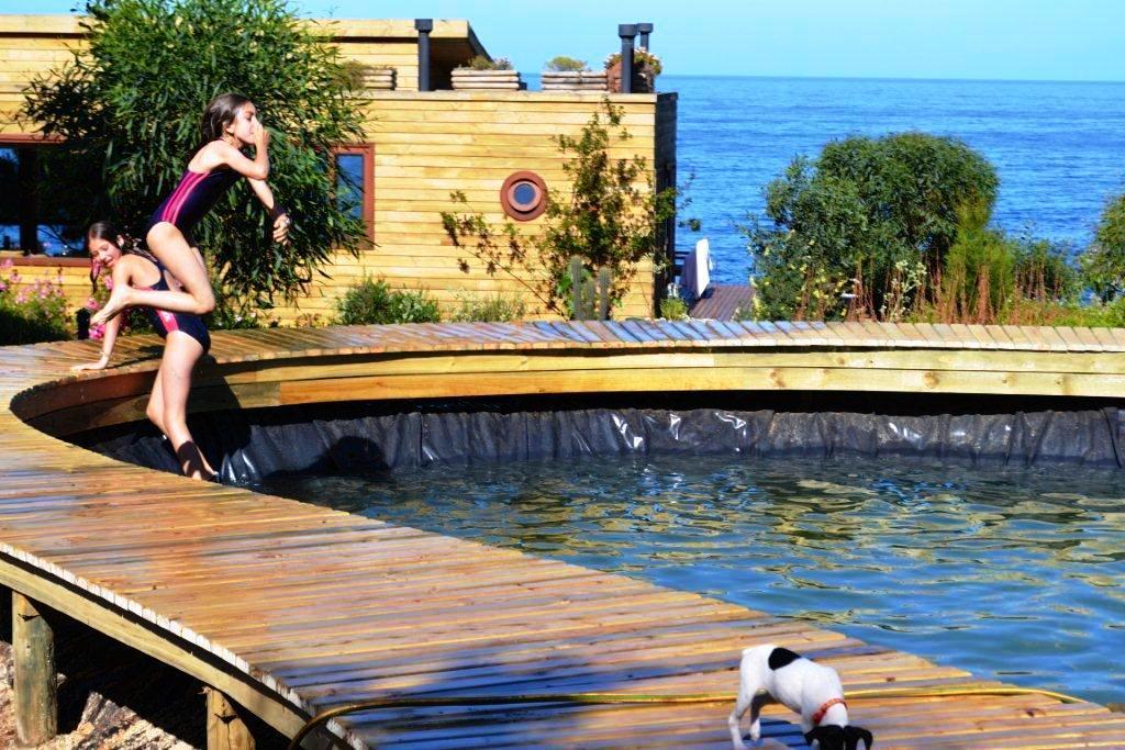 Fernando ruz piscina natural en tunqu n for Construir alberca economica