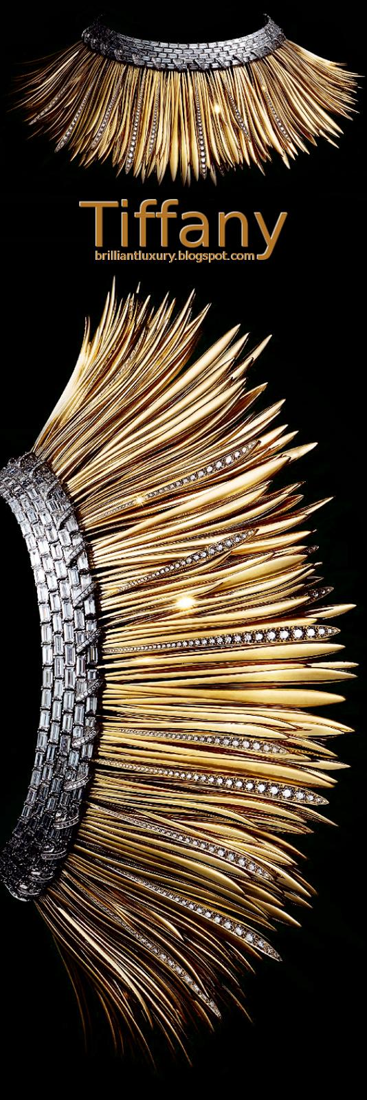 Brilliant Luxury ♦ Tiffany Platinium gold & diamond necklace