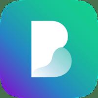 Borealis icon pack latest apk