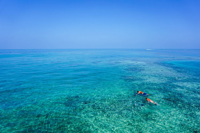 Snorkelling on Great Barrier Reef