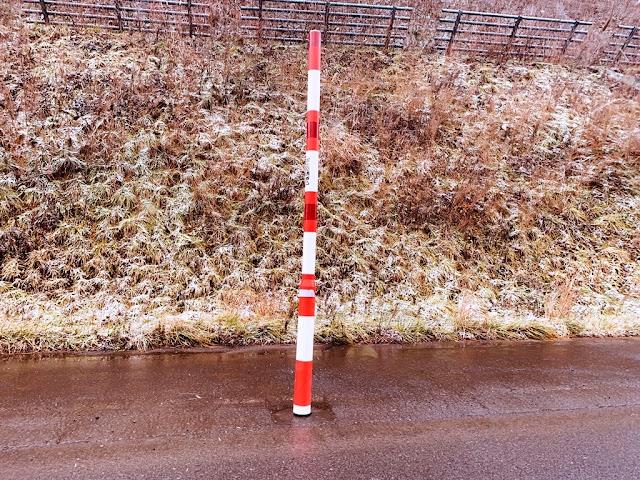 路邊小草覆蓋一層雪