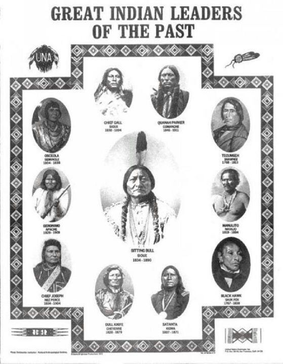 an analysis of american indians I abhor the term native american, says lakota activist russell means  further  that over the centuries the word had gained a pejorative meaning, often  in his  1998 essay i am an american indian, not a native american.