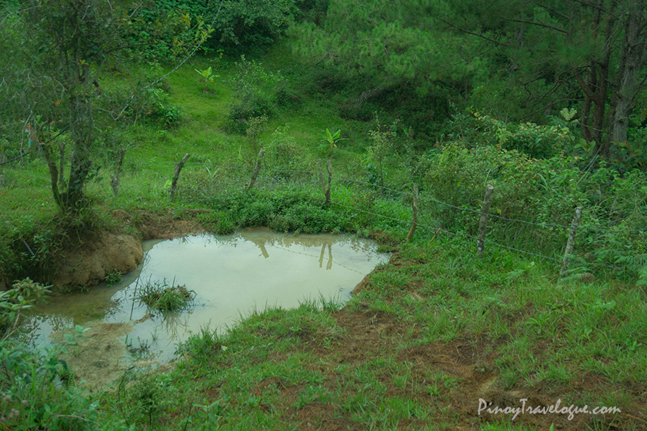 A carabao's bath tub along Kupapey's trail