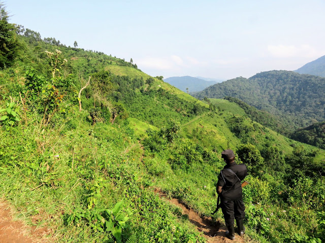 Ranger accompanying our Gorilla tracking group to the Nkuringo family in Uganda