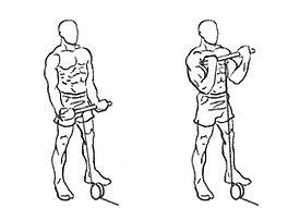 Resultado de imagen de curl biceps polea