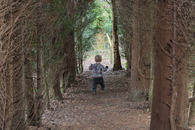 Nature Trail, Coolings Green and Pleasant, Knockholt