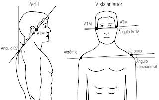 Fisioterapia e Geriatria: Ótimo artigo sobre alinhamento