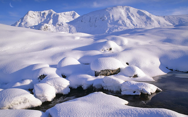Winterlandschap met veel sneeuw