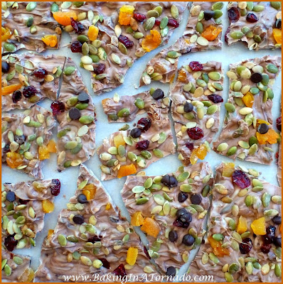 Fall Harvest Crack: Favorite fall flavories incorporated into a bark. | Recipe developed by www.BakingInATornado.com | #recipe #candy #fruit #snack