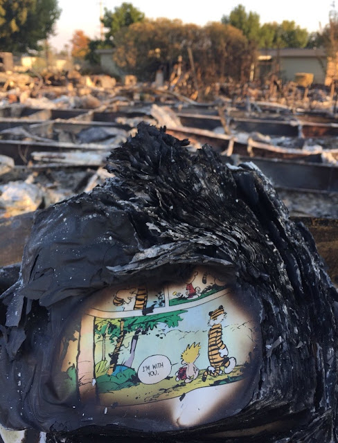 A comic found in a burnt house