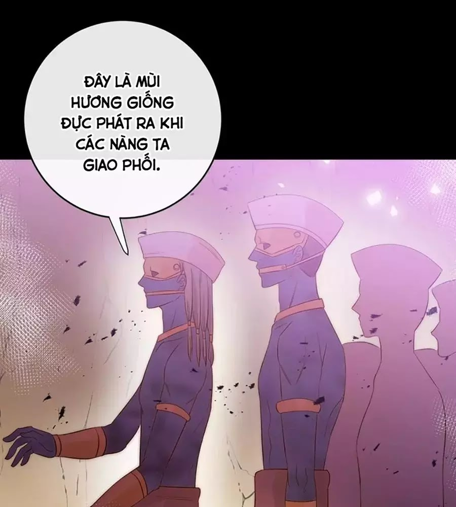 Thất Đại Kỳ Tích – Nước Mắt Bạo Quân Chapter 43 - Trang 26