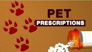 Jessica Layton, Tramadol, pet care, animals, pets