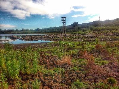 Resultado de imagem para barragens de sao paulo potengi