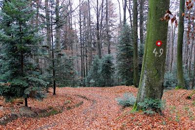 Planinarska staza 47