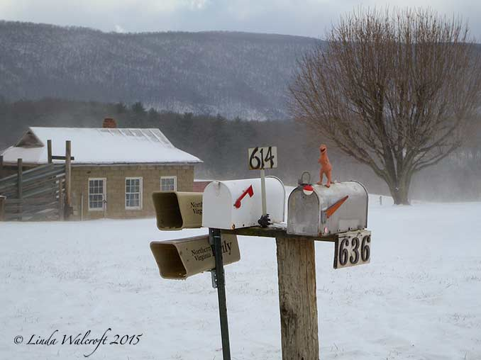 mailbox in snow