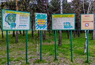 Миргород. Ландшафтный парк «Берёзовая роща»