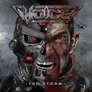 "Voice - ""The Storm"" (video) from the s/t album"