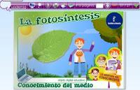 https://repositorio.educa.jccm.es/portal/odes/conocimiento_del_medio/5pc_reproducciondelasflores/