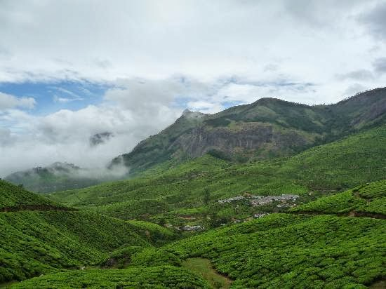 how to reach kolukkumalai, world's highest tea plantation, kolukkumalai tea estate