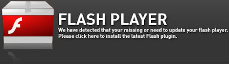 flash player 2017