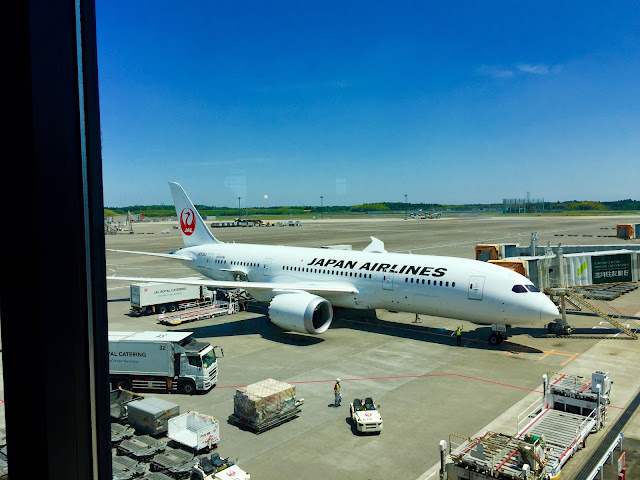 jal-787-8