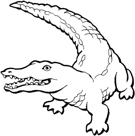 crocodile coloring books printable for learning kids