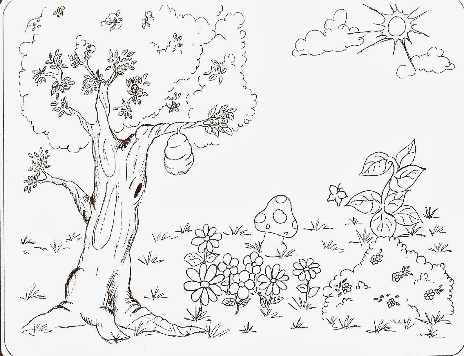 El renuevo de jehova la creacion imagenes para colorear - Dibujos para dibujar en la pared ...
