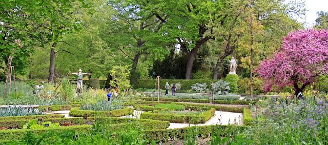 Real Jardín Botánico - Madrid